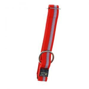 Dragråttan Halsbånd Web uten strup